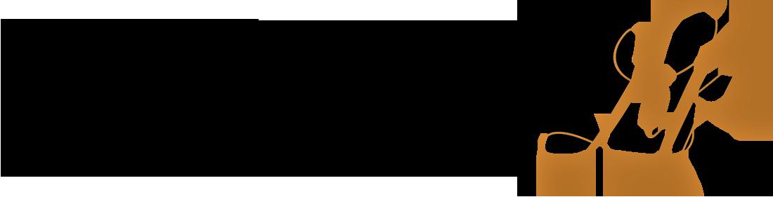 Bronzeville Life Logo
